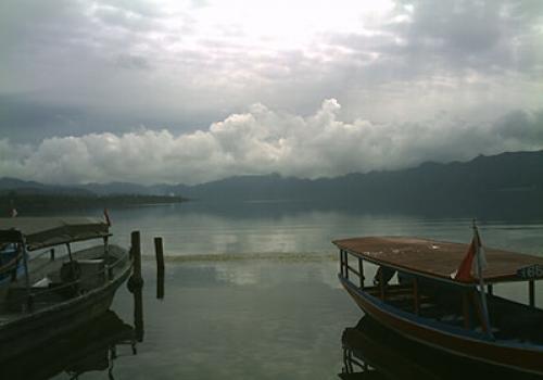Darmaga-Kedisan-di-pagi-hari.html