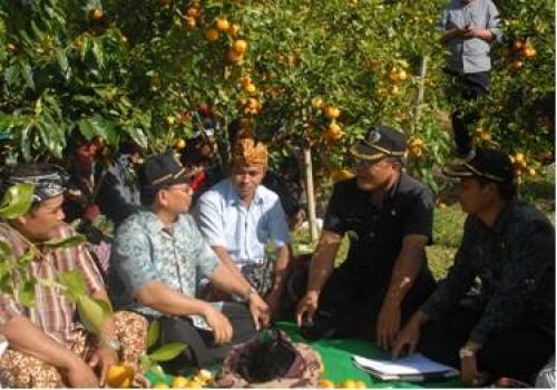Perkenalan Agro Wisata Kintamani