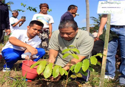 Dukung Bali Green Province, Wagub Apresiasi Program 'Lebih Green Village'