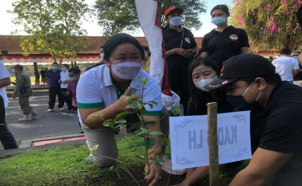 Penanaman pohon pucuk bang serangkaian Hari Lingkungan Hidup Sedunia 5 Juni 2021