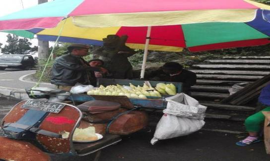 Penertiban pedagang di kawasan obyek wisata Penelokan