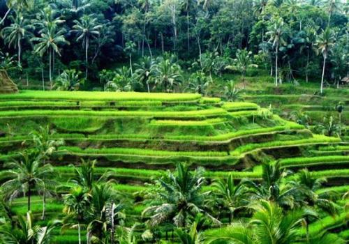 Lembah Pantunan Potensial Dijadikan Wisata Alam