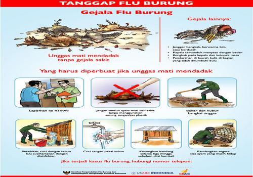BERSAMA-TANGGAP-FLU-BURUNG.html